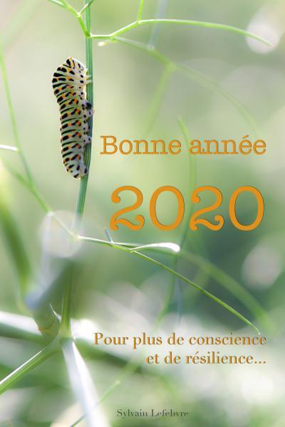 Carte voeux 2020 copie