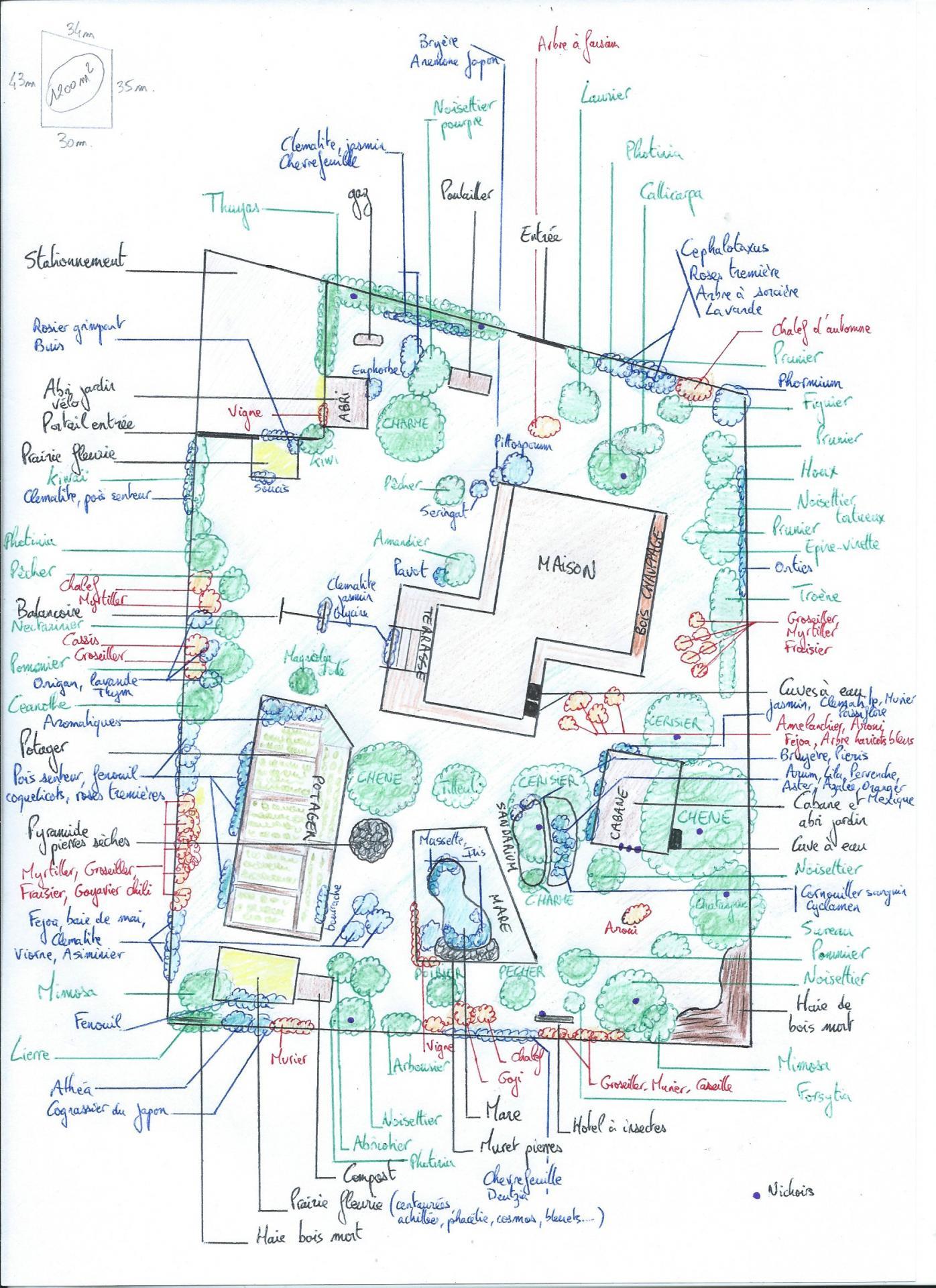 Plan jardin