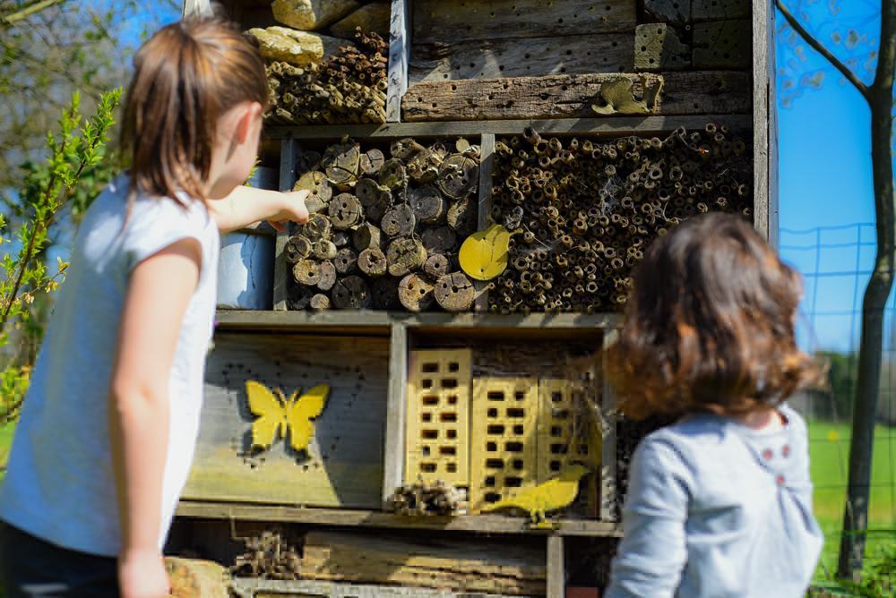 Gites à abeilles solitaires